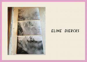 http://www.riadierckskroon.nl/wp-content/uploads/Pagina-boekje-10-Eline-Diercks-L-naam-en-foto-D-300x216.jpg