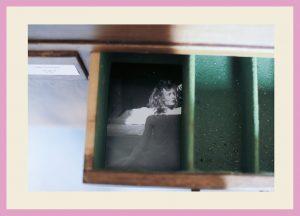 http://www.riadierckskroon.nl/wp-content/uploads/Pagina-boekje-18-Lieke-Romeijn-L-foto-D-300x216.jpg